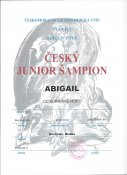 Cesky-juniorsampion-001